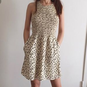 Dolce vita size small polka dot dress